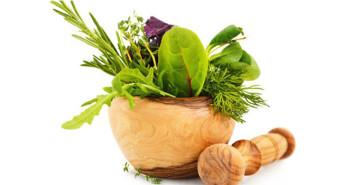 طب الأعشاب وعلاج مرض السكري