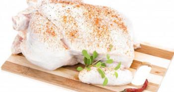 تذوق الدجاج بأكثر من 10 نكهات شهية