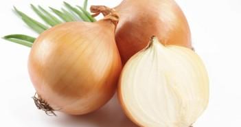 فوائد زيت البصل