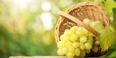 زيت بذر العنب لعلاج سرطان البروستاتا