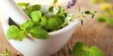 أهم الأعشاب لعلاج تساقط الشعر والحفاظ على لونه
