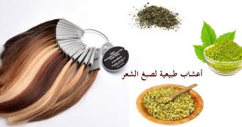 أهم الوصفات و الأعشاب الطبيعية لصبغ الشعر